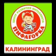 Пифагорка, центр ментальной арифметики и развития интеллекта, Детские / подростковые клубы, Калининград