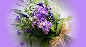 Магазин цветов, ИП Молоканова Е.П., Цветы, Калининград