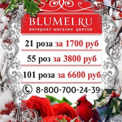 Blume,Доставка цветов и букетов, Магазин цветов, Искусственные растения и цветы, Интернет-магазин,Красноярск
