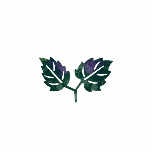 Зелёный,Магазин цветов, Доставка цветов и букетов,Красноярск