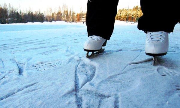 Ледовый каток «Борей»,Каток,Красноярск