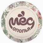 Мед Ополья, торговая компания, Центры альтернативной медицины, Владимир