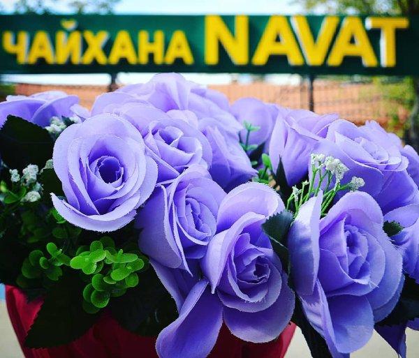 NAVAT, Кафе,  Байконур