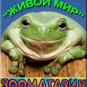Зоомагазин Живой мир,Зоомагазин, Магазин аквариумов,Красноярск