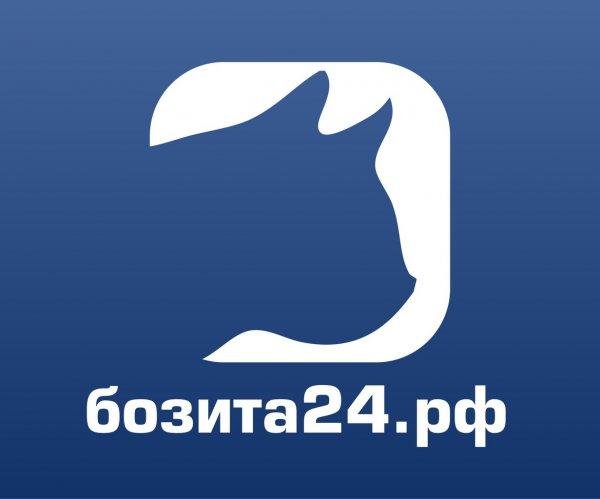 Интернет-зоомагазин Бозита24.рф,Зоомагазин, Интернет-магазин,Красноярск