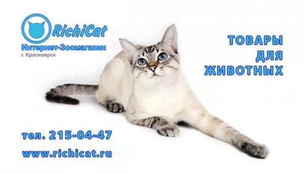 Интернет-магазин Richicat.ru,Интернет-магазин, Зоомагазин,Красноярск