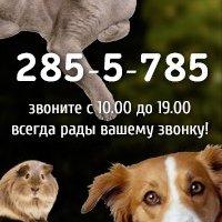 Интернет-магазин ZooExpert24.ru,Зоомагазин, Интернет-магазин,Красноярск