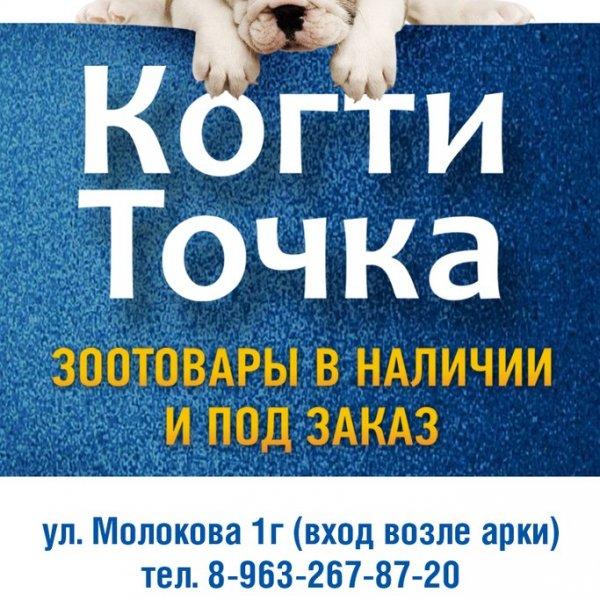 КогтиТочка,Зоомагазин, Магазин аквариумов,Красноярск
