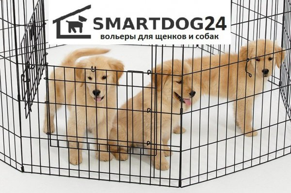 СмартДог24,Зоомагазин, Товары для животных оптом,Красноярск