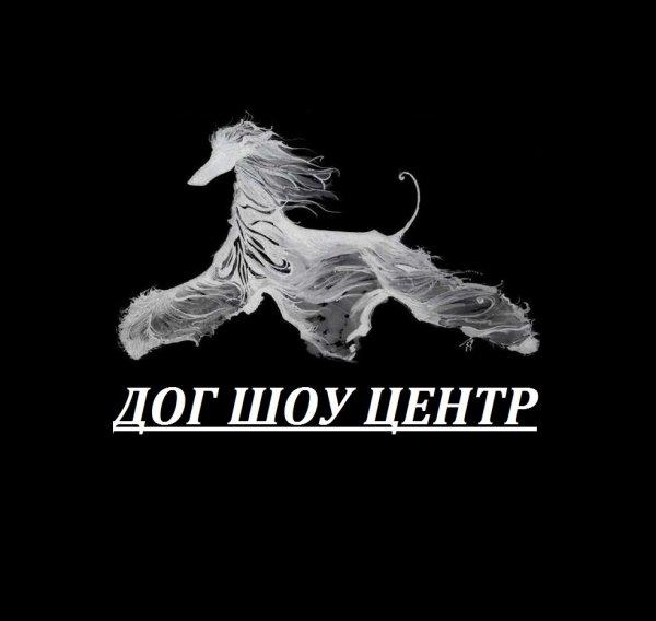 Центр профессиональной подготовки собак Дог Шоу центр,Клуб любителей животных, Зоомагазин, Зоосалон, зоопарикмахерская,Красноярск