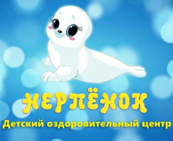 Нерпёнок,Спортивный клуб, секция, Бассейн,Красноярск