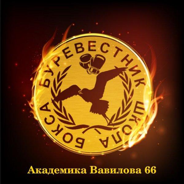 Школа бокса Буревестник,Спортивный клуб, секция,Красноярск