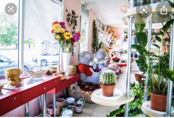 Семь роз,флористический салон,Нальчик