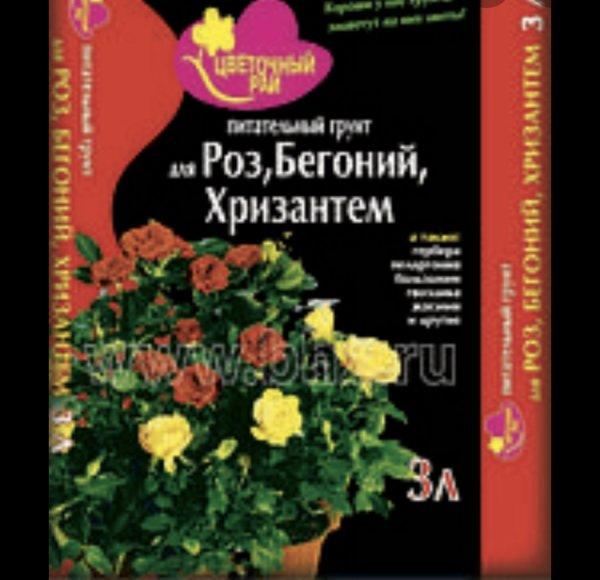Цветочный рай,флористический салон,Нальчик