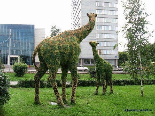 логотип компании Цветочная скульптура «Жирафы» в Красноярске