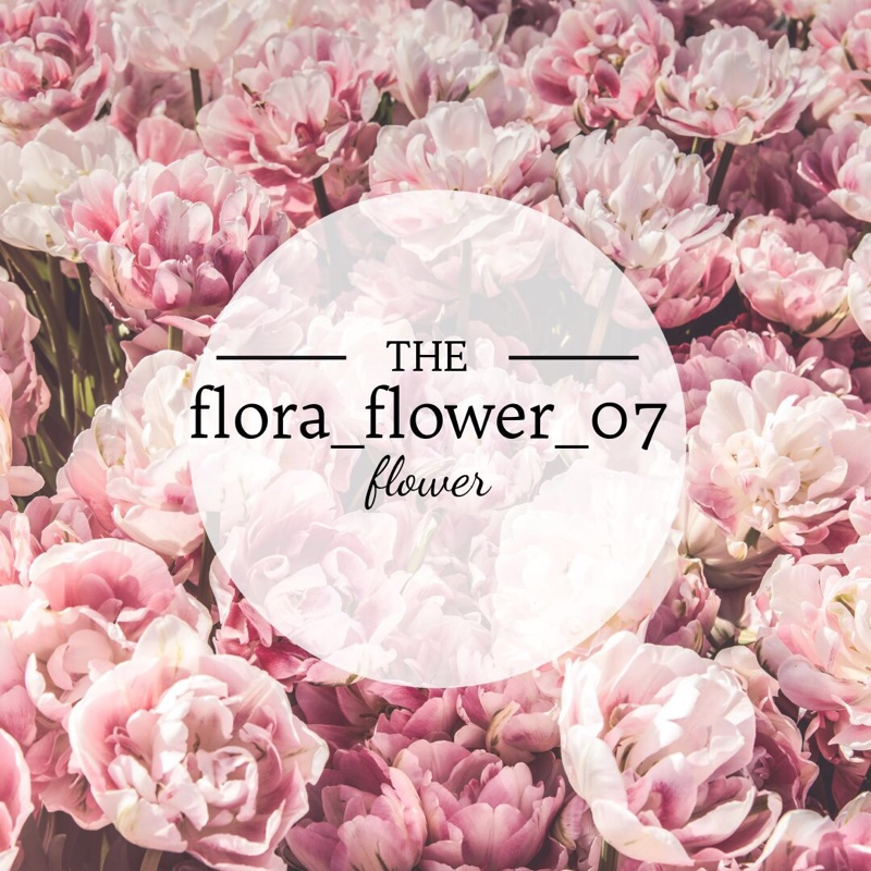 flora_flower_07,Цветы ,Нальчик