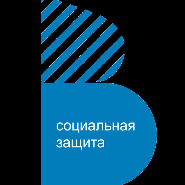 ГАУСО ВО Муромский комплексный центр социального обслуживания населения Социальное обслуживание
