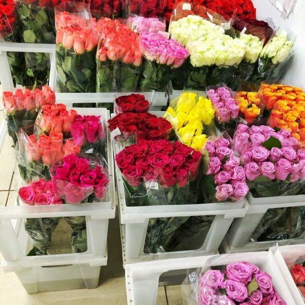 Роза+, Магазин цветов, Ессентуки