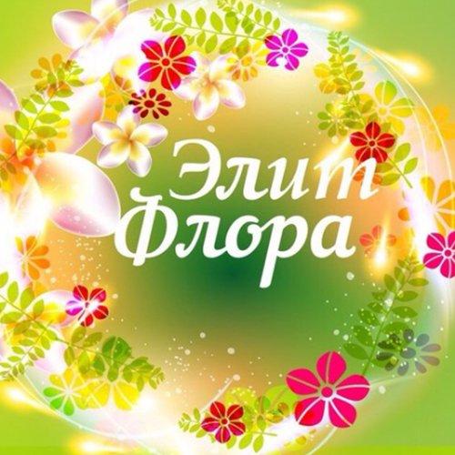 Элит-Флора, Магазин цветов, Лодейное Поле