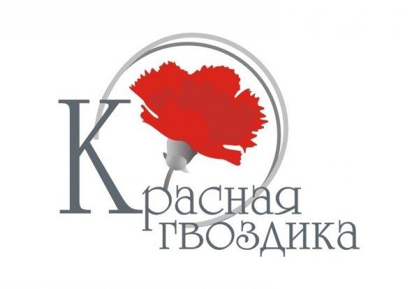 Красная гвоздика,АУ СОН ТО «Социально-оздоровительный центр граждан пожилого возраста и инвалидов,Тюмень