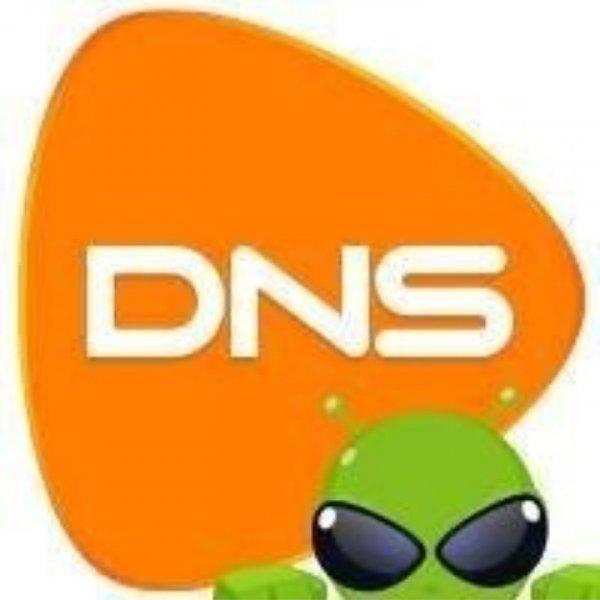 логотип компании DNS