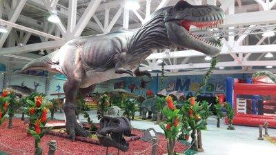 Парк динозавров Рекс,Музей,Ростов-на-Дону