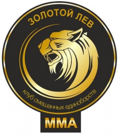 Золотой лев, зал боевых единоборств, Детские / подростковые клубы, Владимир