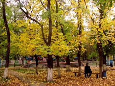 С 21 сентября в Азове стартует осенний месячник по благоустройству.