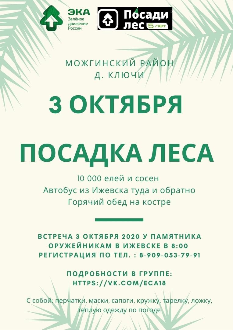 10 тысяч елей и сосен высадят в Можгинском районе