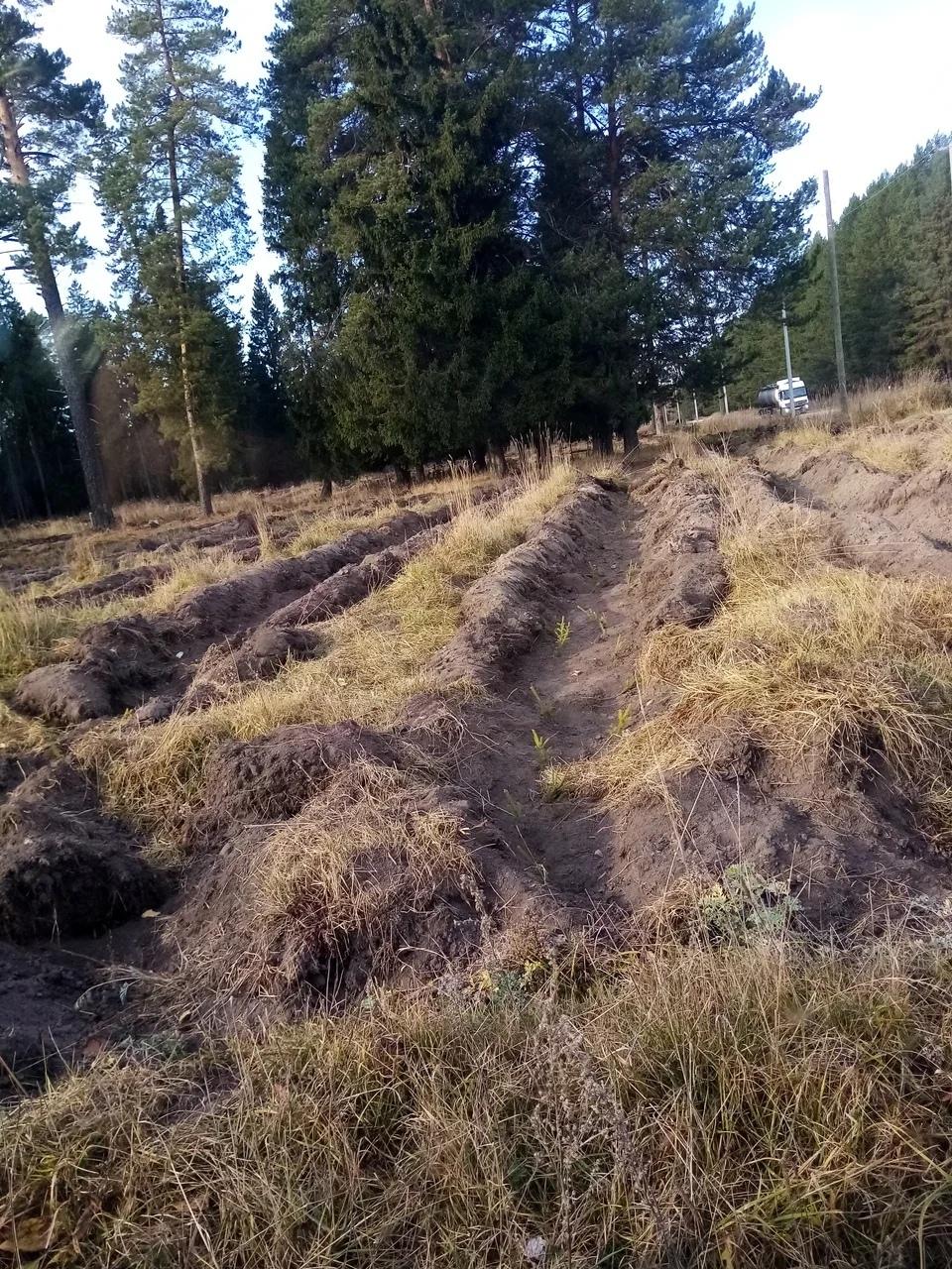 В Можгинском районе началась подготовка к пожароопасному сезону 2021 года.