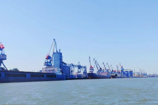 Ещё 3 зерновых терминала построят в Азове