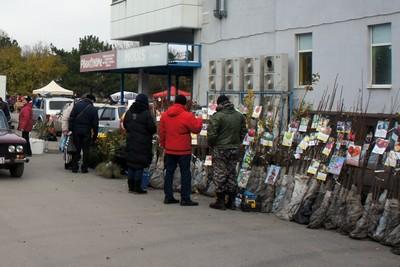 Первая зимняя ярмарка в Азове