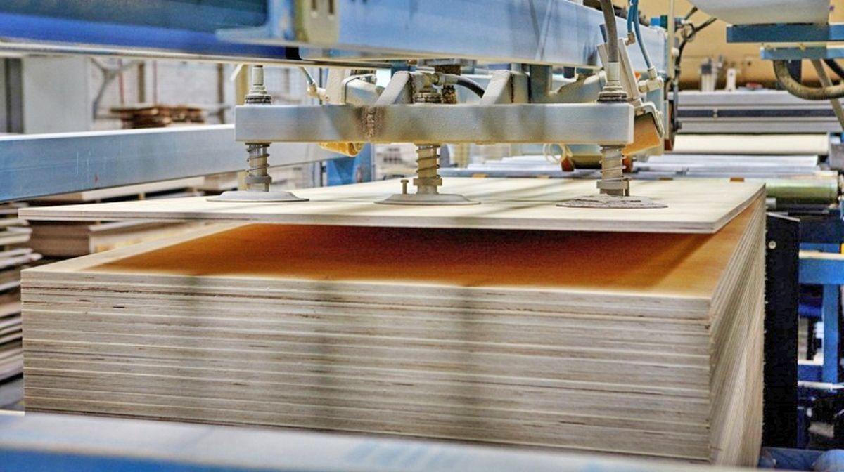 ООО «ЕвроФанГруппСибирь» осенью этого года приобрела Анжерский фанерный комбинат и теперь планирует инвестировать в завершение проекта строительства сумму порядка 1,5 млрд рублей