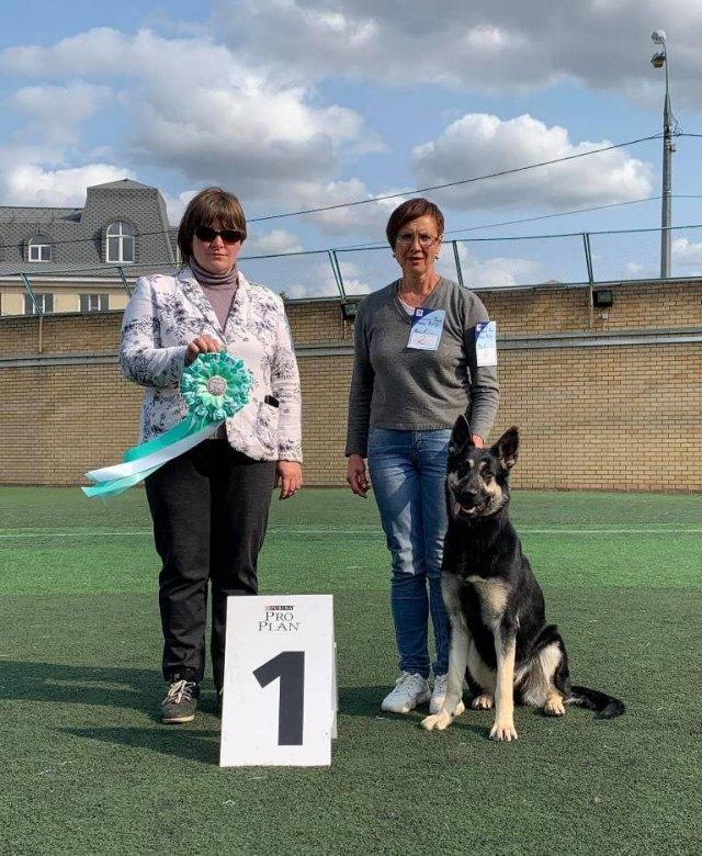 В Можге осуществляет свою деятельность Клуб любителей собак