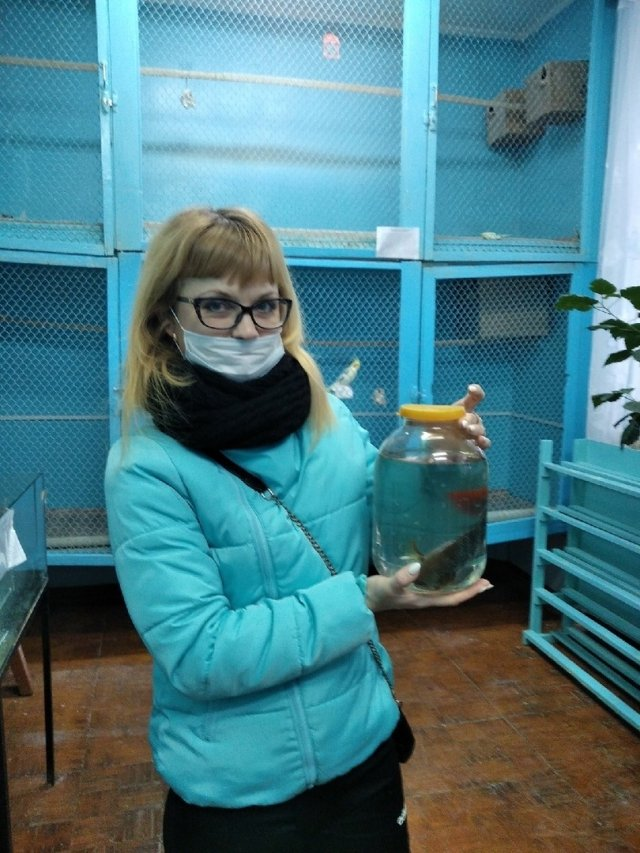 Уникальные виды рыб появились в коллекции Дома детского творчества Можги.