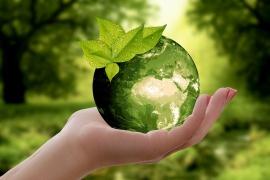 В Ростовской области хотят сделать обязательными экоуроки
