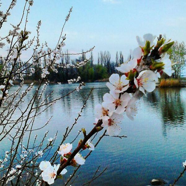Россиян предупредили о перепадах температур в марте