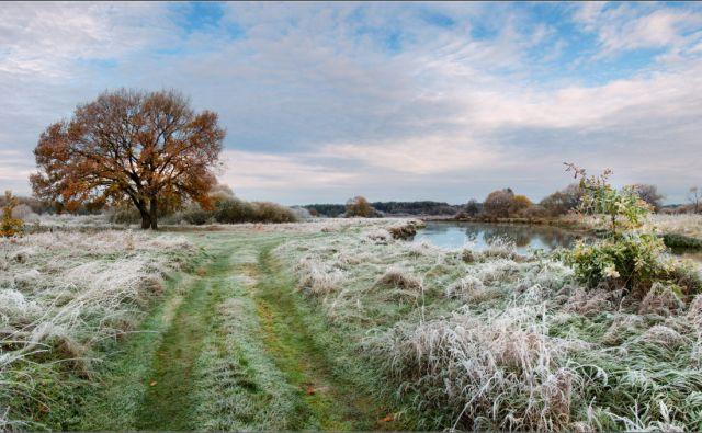 Прогноз погоды на весну и лето в Ростовской области