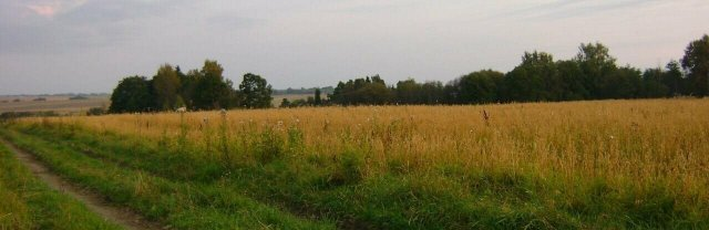 Экс-чиновник Азовского района незаконно раздал участки у воды