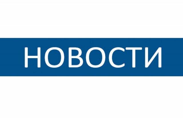 В Петушинском районе инспектор ОГИБДД провела мероприятие с юными участниками дорожного движения