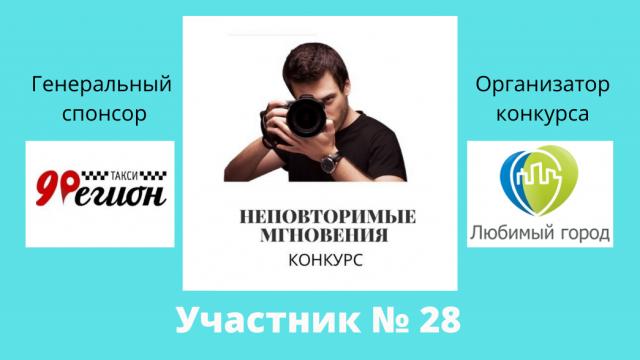 №28 Хрулёва Виолетта