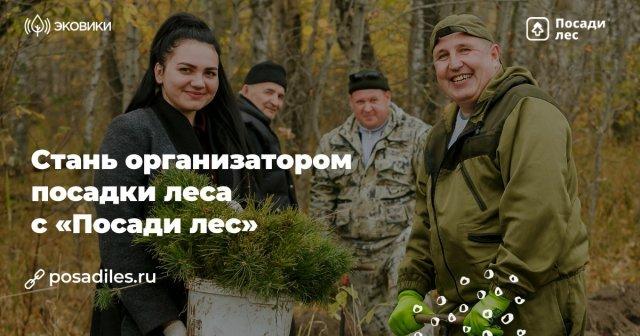 Проект по лесовосстановлению «Посади Лес» ищет организаторов посадки леса