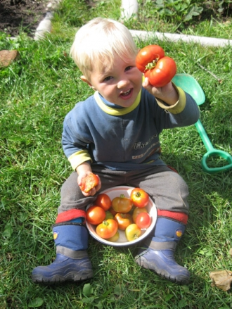 Советы экспертов для защиты сада и огорода от вредителей .