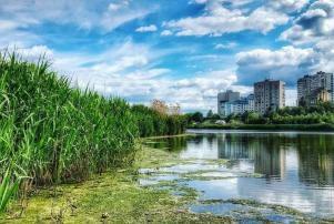В Ростовской области взяли на контроль ситуацию с загрязнением реки Темерник