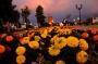 Открытый публичный конкурс цветочного оформления «Цветущий город»