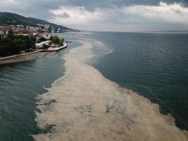 Мраморное море в районе Стамбула покрылось слизью.