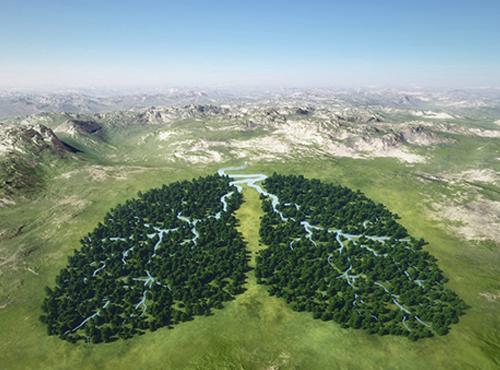 Сегодня Всемирный День Эколога!