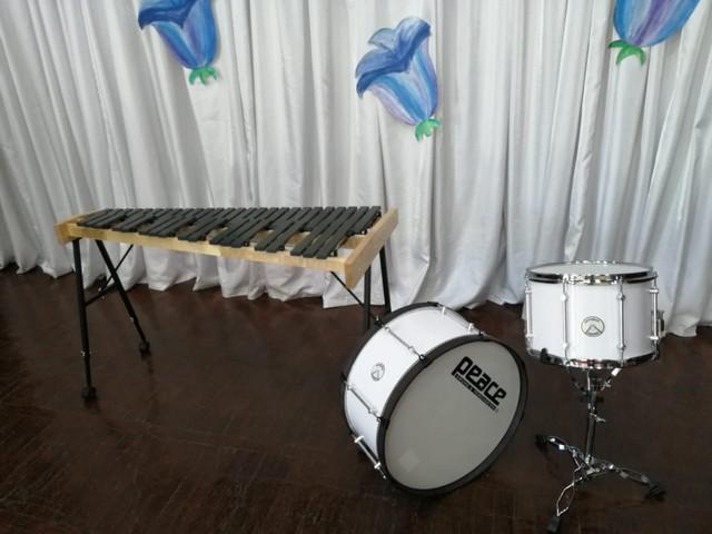 Арсенал оборудования Азовской детской школы искусств имени Сергея Прокофьева пополнился новыми музыкальными инструментами.