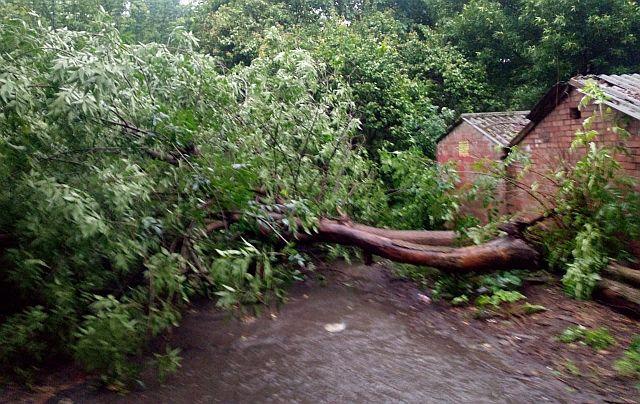 Ливень, начавшийся в Ростове утром в четверг, 17 июня, затопил все районы города.