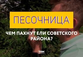 Чем пахнут ели Советского района Красноярска: «песочница» на ТВК